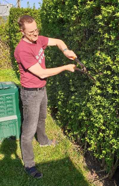Heckenschnitt / Formschnitt / Obstbaumschnitt